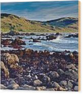 Lost Coast In Winter Wood Print