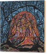 Lost Egg 09 Wood Print