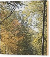 Lost In The Fall Wood Print