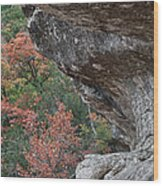 Lost Maples Fall Scene Wood Print