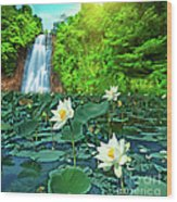 Lotus And Waterfall Wood Print