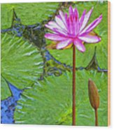 Lotus Blossom And Water Lily Pads Wood Print