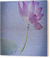 Lotus Dream Wood Print by Jill Balsam