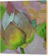Lotus Dreaming 1 Wood Print