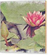 Lotus Flower12 Wood Print