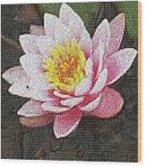 Lotus In The Rain 3 Wood Print