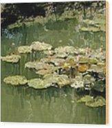 Lotus Pond 2 Wood Print