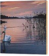 Lough Leane, Killarney National Park Wood Print