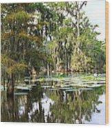 Louisiana Wood Print