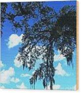 Louisiana Skyscape Wood Print