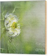 Love In A Mist Floral Wood Print