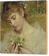 Love In A Mist Wood Print by Sophie Anderson