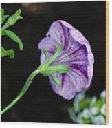 Love In The Garden Wood Print