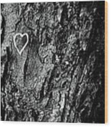 Love Of Nature Wood Print