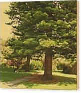 Lovers In Spring Wood Print