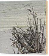 Lovers Key Beach Wood Print