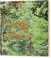 Loving The Season Of Autumn Wood Print