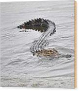 Low Country Marsh Alligator Wood Print