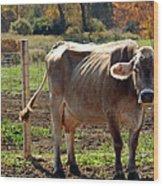Low Cow Wood Print