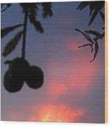 Low Hanging Fruit Wood Print by Juliana  Blessington
