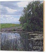 Lower Klamath Wildlife Refuge Wood Print