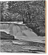 Lower Tahquamenon Falls 6140b Wood Print