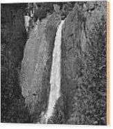 Lower Yosemite Falls Wood Print