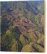 Lowland Tropical Rainforest Cleared Wood Print