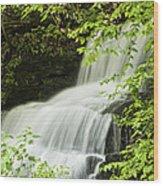 Loyalsock Waterfall Wood Print