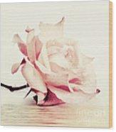 Lucid Wood Print by Priska Wettstein
