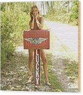 Mailbox 069 Wood Print
