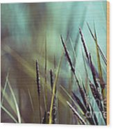 Luminis 02 - S01a Wood Print