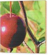 Luscious Fruit Wood Print