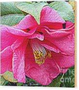 Luscious Pink Hdr Wood Print