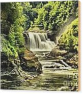 Lush Lower Falls Wood Print