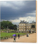 Luxembourg Gardens 2 Wood Print