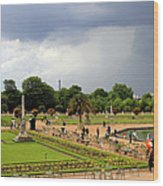 Luxembourg Gardens Wood Print