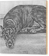 Lying Low - Doberman Pinscher Dog Art Print Wood Print