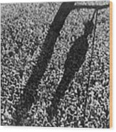 Lynching. The Shadow Of Lynching Wood Print by Everett