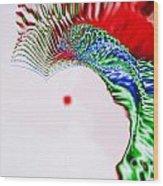 Macaw Wood Print