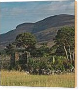 Maccarthy Mor Castle Ireland Wood Print