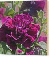 Maco Petunia Flower Double Burgundy Madness Art Prints Wood Print