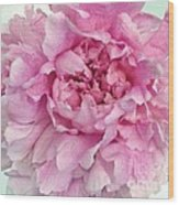 Macro Peony Abstract Wood Print