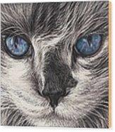 Mad Cat Wood Print by Elena Kolotusha
