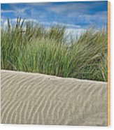 Mad River Dune Wood Print