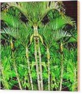 Madagascar Wood Print