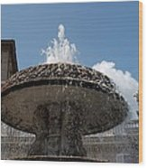 Maderno's Fountain Wood Print