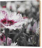 Magenta Flower Wood Print