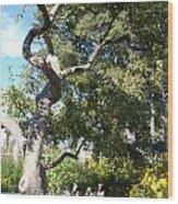 Magestic Tree Wood Print