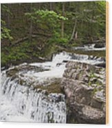 Maggies Falls Lower Through A Green Forest Wood Print
